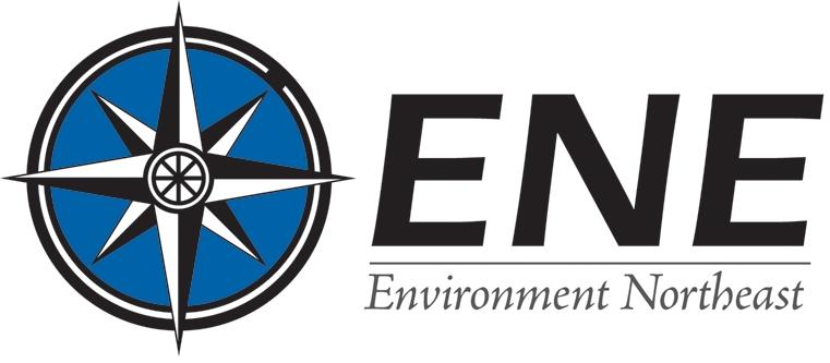 Environment NE logo